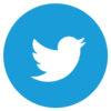 logo-icono-twitter