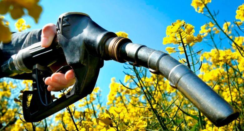 Proponen uso de hidrometano como combustible