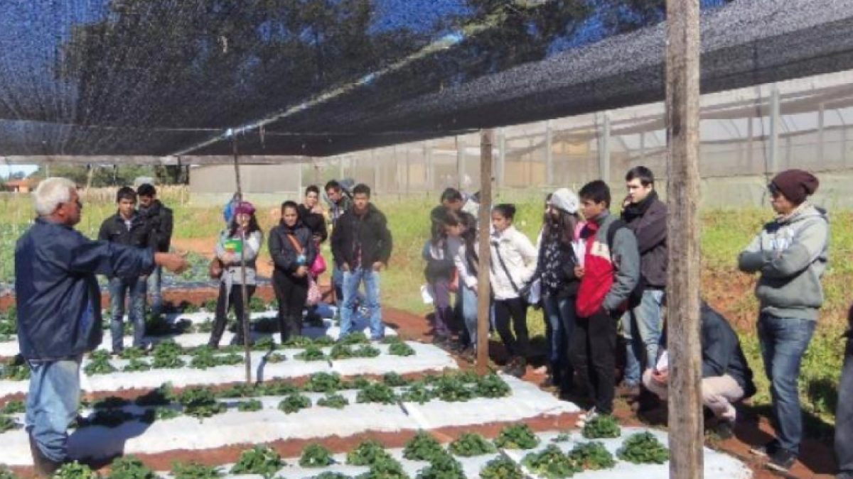 Investigación agrícola, interés de estudiantes