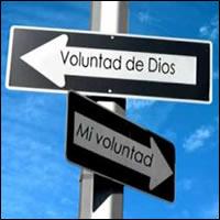Una clave para la felicidad: dejar que se haga la voluntad de Dios