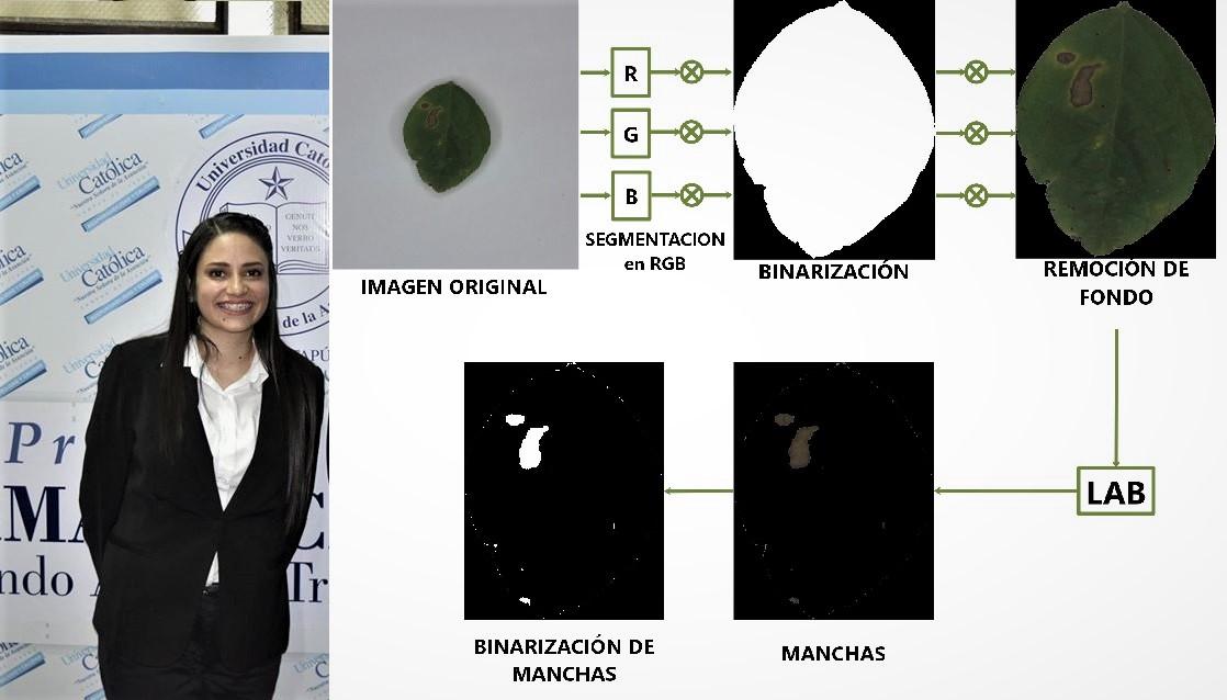Estudiante de Ingeniería Informática desarrolla programa para identificar enfermedad en la soja