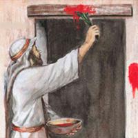 la-fiesta-del-pesaj-o-pascua-judia